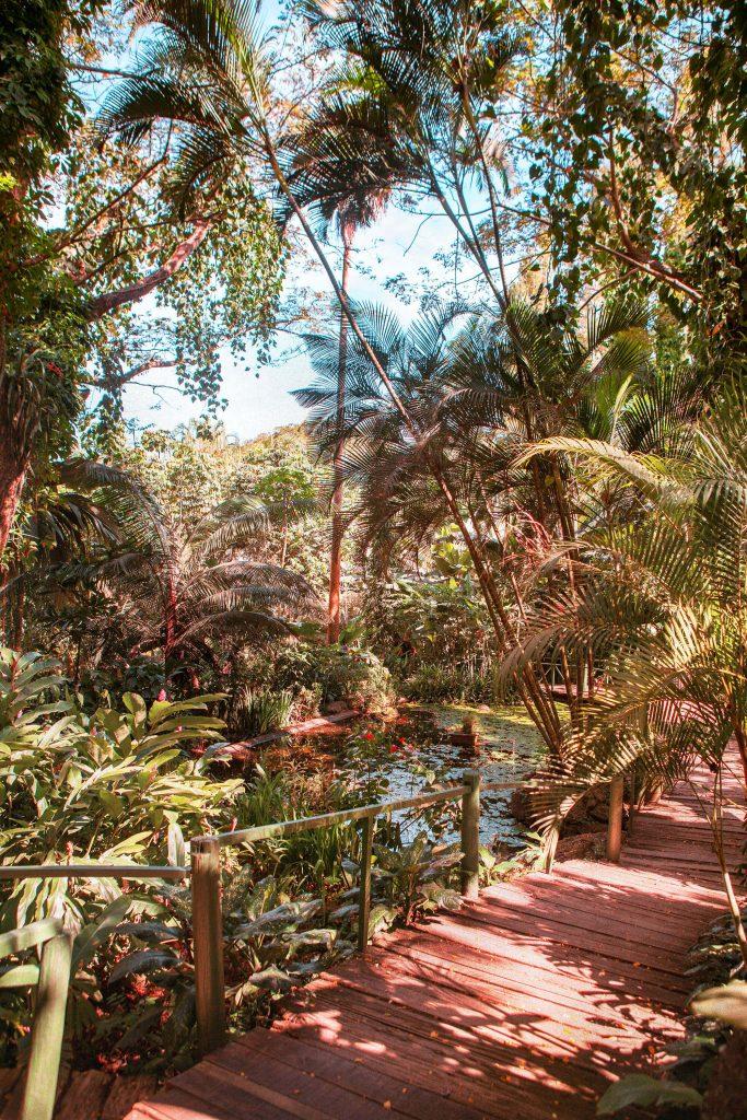 Jardin du géant endormi, Nadi aux Fidji